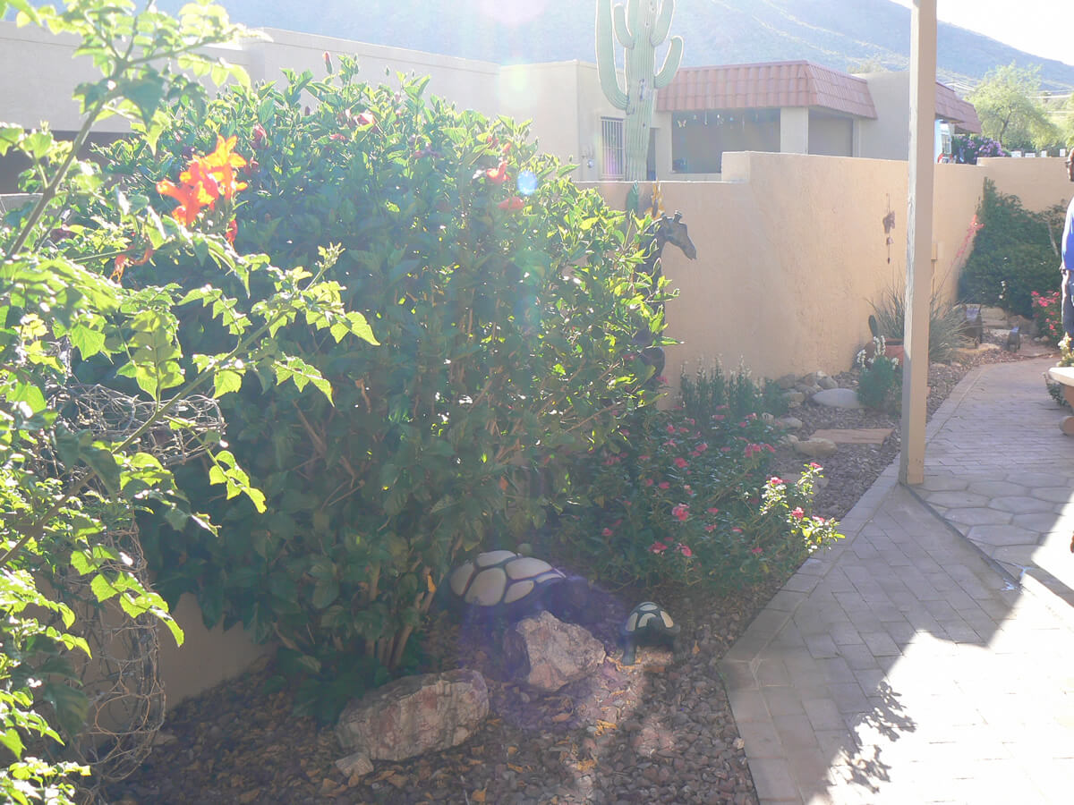 Licensed residential irrigation contractor Tucson